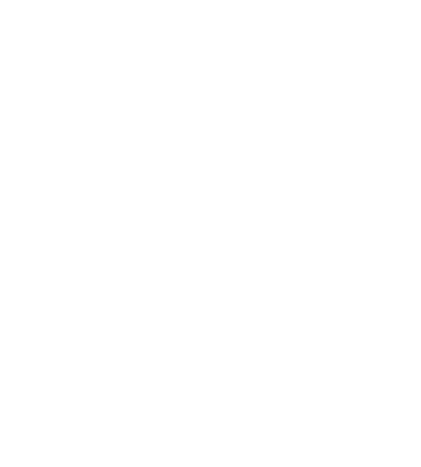 bsb-logo